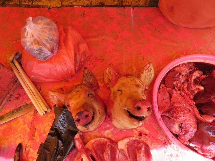 Sulawesi tomohon dierenmarkt