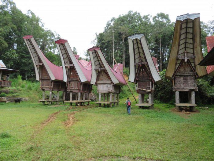 Vijf traditionele rijstopslagplaatsen van de Toraja