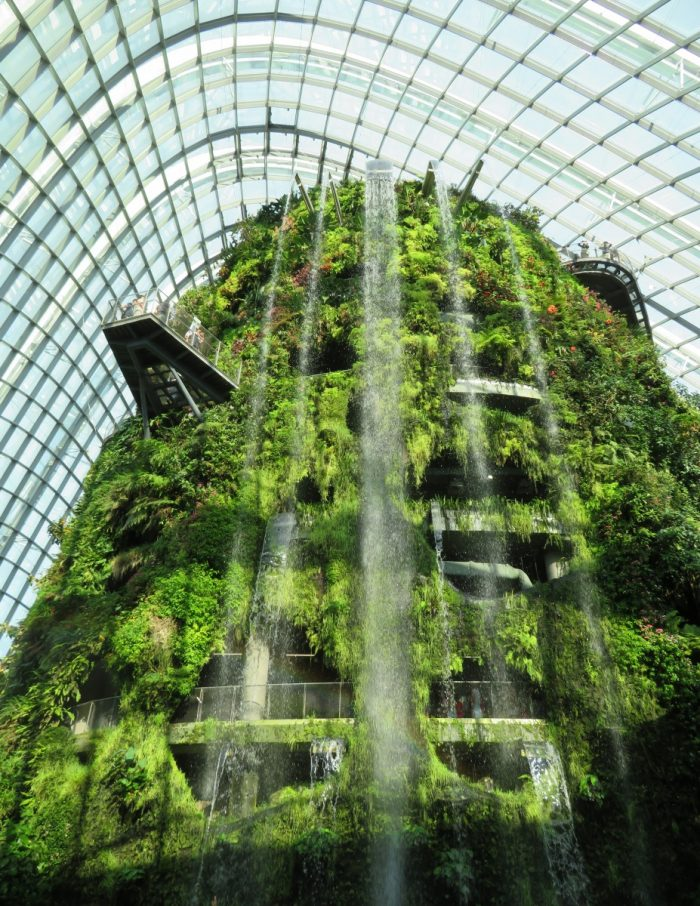 waterval in Rainforest Dome