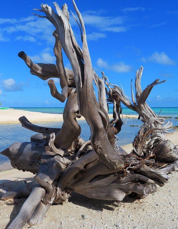 Frans-Polynesië: Rurutu en Tikehau
