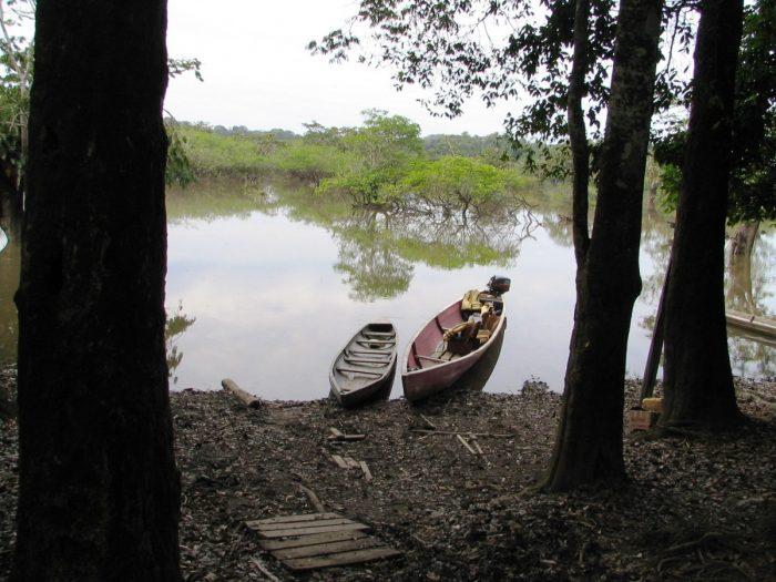 met de kano door Cuyabeno