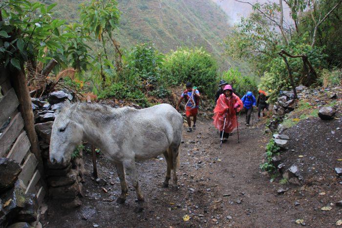 regen tijdens inca trail