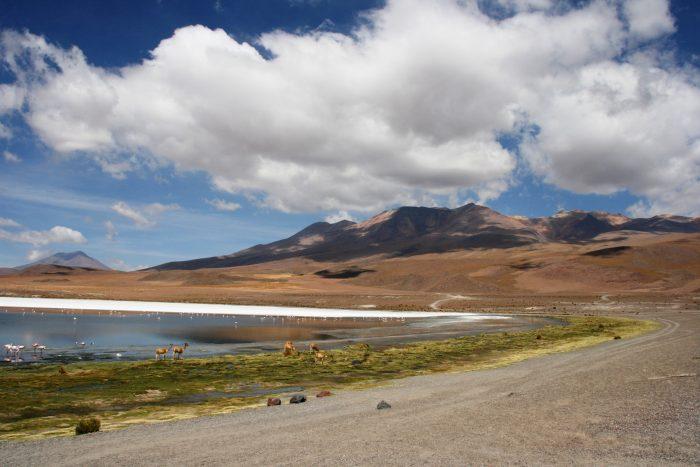 landschap Andes